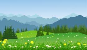 Πράσινο θερινό τοπίο με τα βουνά, τις μαργαρίτες και τα δέντρα Στοκ Φωτογραφίες