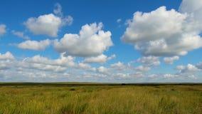 Πράσινο θερινό τοπίο τομέων, timelapse Σύννεφα και τομέας μπλε ουρανού Στοκ εικόνα με δικαίωμα ελεύθερης χρήσης