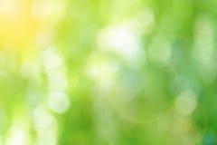 Πράσινο θολωμένο αφηρημένο υπόβαθρο Στοκ Εικόνες
