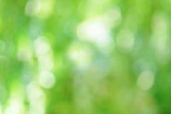 Πράσινο θολωμένο αφηρημένο υπόβαθρο Στοκ εικόνες με δικαίωμα ελεύθερης χρήσης