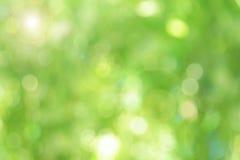 Πράσινο θολωμένο αφηρημένο υπόβαθρο Στοκ φωτογραφίες με δικαίωμα ελεύθερης χρήσης