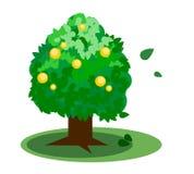 Πράσινο διάνυσμα δέντρων Στοκ Εικόνες