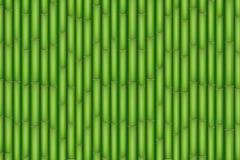 πράσινο διάνυσμα απεικόνισης μπαμπού ανασκόπησης Στοκ Φωτογραφία