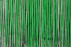 πράσινο διάνυσμα απεικόνισης μπαμπού ανασκόπησης Στοκ φωτογραφία με δικαίωμα ελεύθερης χρήσης