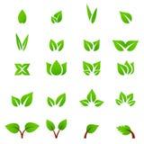 Πράσινο διάνυσμα φύλλων εικονιδίων Eco Στοκ Εικόνα