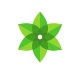 Πράσινο διανυσματικό εικονίδιο λουλουδιών Στοκ Εικόνα