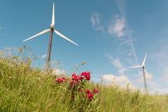 Πράσινο λιβάδι με τους ανεμοστροβίλους που παράγουν την ηλεκτρική ενέργεια Στοκ Φωτογραφία
