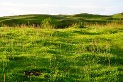 Πράσινο λιβάδι στη Σκωτία Στοκ φωτογραφίες με δικαίωμα ελεύθερης χρήσης