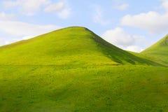 Πράσινο λιβάδι. Στοκ φωτογραφία με δικαίωμα ελεύθερης χρήσης