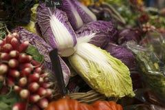Πράσινο και άσπρο κινεζικό λάχανο στοκ εικόνες