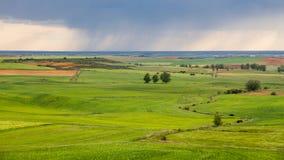Πράσινο και επίπεδο τοπίο με τη θύελλα Στοκ Εικόνες