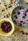 Πράσινο και κίτρινο σύνολο πιάτων Oatmeal, των σπόρων chia, των φρέσκων μούρων, των σπόρων, των καρυδιών και του γάλακτος στοκ φωτογραφία με δικαίωμα ελεύθερης χρήσης