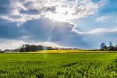 Πράσινο και κίτρινο φως του ήλιου και σύννεφα βιασμών λιβαδιών λιβαδιών Στοκ φωτογραφία με δικαίωμα ελεύθερης χρήσης
