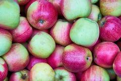 Πράσινο και κόκκινο υπόβαθρο μήλων Στοκ Εικόνες