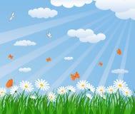 πράσινο καλοκαίρι πεδίων διανυσματική απεικόνιση