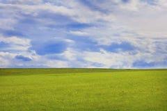 πράσινο καλοκαίρι πεδίων Στοκ Εικόνα