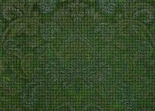 Πράσινο κατασκευασμένο υπόβαθρο του Paisley Στοκ Φωτογραφίες