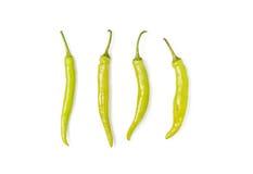 Πράσινο καψικό πιπεριών τσίλι annuum Στοκ φωτογραφία με δικαίωμα ελεύθερης χρήσης