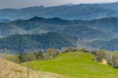 Πράσινο καλλιεργήσιμο έδαφος στους κυλώντας λόφους στοκ εικόνα με δικαίωμα ελεύθερης χρήσης