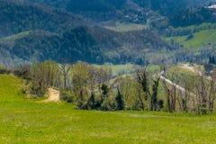 Πράσινο καλλιεργήσιμο έδαφος στους κυλώντας λόφους στοκ φωτογραφίες με δικαίωμα ελεύθερης χρήσης