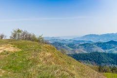 Πράσινο καλλιεργήσιμο έδαφος στους κυλώντας λόφους στοκ εικόνες με δικαίωμα ελεύθερης χρήσης