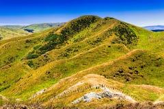 Πράσινο καλλιεργήσιμο έδαφος λόφων στοκ φωτογραφίες
