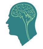πράσινο κεφάλι εγκεφάλο& Στοκ εικόνες με δικαίωμα ελεύθερης χρήσης