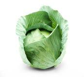 πράσινο κεφάλι λάχανων Στοκ Εικόνα
