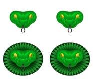Πράσινο κεφάλι φιδιών Στοκ εικόνα με δικαίωμα ελεύθερης χρήσης