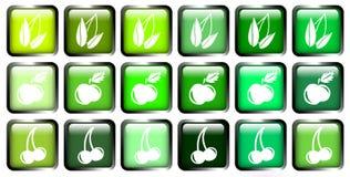 Πράσινο κουμπί Στοκ Εικόνες