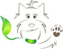 πράσινο κουτάβι περιλαίμ&iota Στοκ φωτογραφία με δικαίωμα ελεύθερης χρήσης