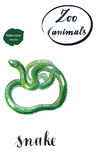 Πράσινο κουλουριασμένο φίδι διανυσματική απεικόνιση