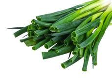 Πράσινο κρεμμύδι στο άσπρο υπόβαθρο στοκ εικόνα με δικαίωμα ελεύθερης χρήσης