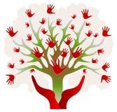 πράσινο κόκκινο δέντρο χερ Στοκ Φωτογραφία