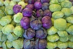 πράσινο κόκκινο λάχανων Στοκ Εικόνες