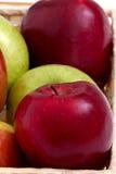 πράσινο κόκκινο μήλων Στοκ Εικόνες