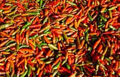 πράσινο κόκκινο πιπεριών Στοκ φωτογραφία με δικαίωμα ελεύθερης χρήσης