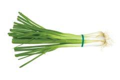 πράσινο λευκό κρεμμυδιών ανασκόπησης Στοκ Φωτογραφία