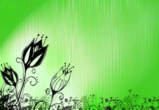 πράσινο λιβάδι απεικόνιση&s Στοκ Εικόνα