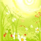 πράσινο λιβάδι λιβελλο&ups ελεύθερη απεικόνιση δικαιώματος