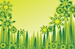 πράσινο λιβάδι λουλου&delta Στοκ Εικόνα