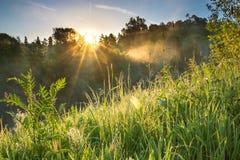 Πράσινο λιβάδι χλόης την άνοιξη Στοκ φωτογραφία με δικαίωμα ελεύθερης χρήσης