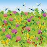 πράσινο λιβάδι Στοκ Εικόνες