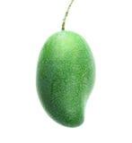 Πράσινο μάγκο που απομονώνεται σε ένα άσπρο υπόβαθρο στοκ εικόνες με δικαίωμα ελεύθερης χρήσης