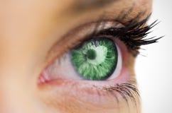 Πράσινο μάτι που κοιτάζει στο θηλυκό πρόσωπο Στοκ Εικόνα