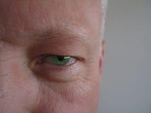 Πράσινο μάτι Στοκ εικόνα με δικαίωμα ελεύθερης χρήσης