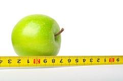 πράσινο μήλου όργανο που μ στοκ φωτογραφία με δικαίωμα ελεύθερης χρήσης