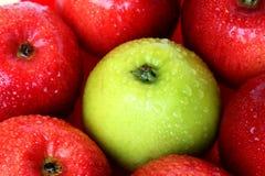 πράσινο μήλου Στοκ Φωτογραφία
