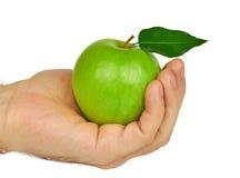 Πράσινο μήλο στη διάθεση Στοκ φωτογραφίες με δικαίωμα ελεύθερης χρήσης