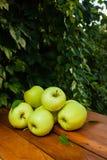 Πράσινο μήλο στο χωριό Στοκ φωτογραφίες με δικαίωμα ελεύθερης χρήσης